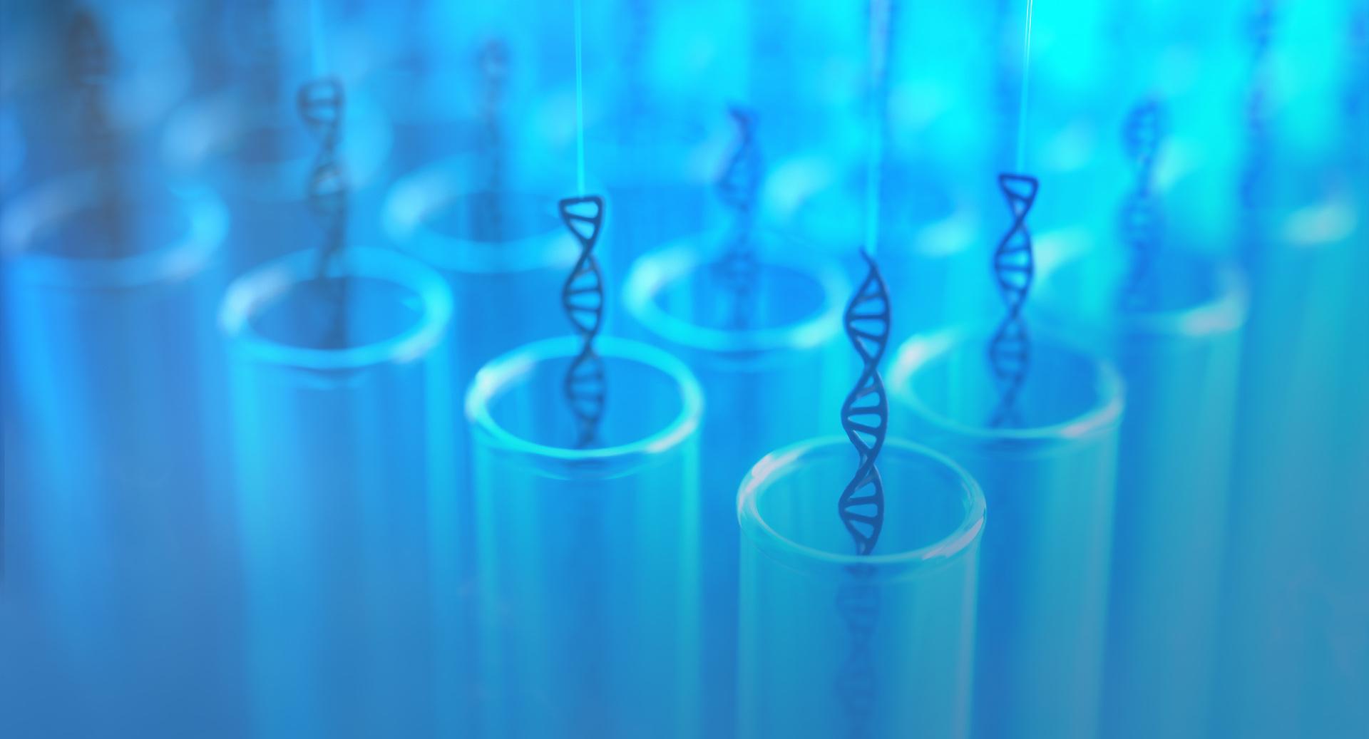 Test Tube DNA Cloning
